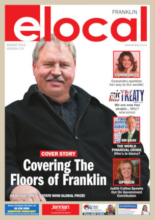 Cover of elocal Franklin #173
