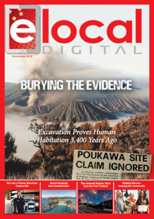 elocal Digital Edition – November 2018 (#212)