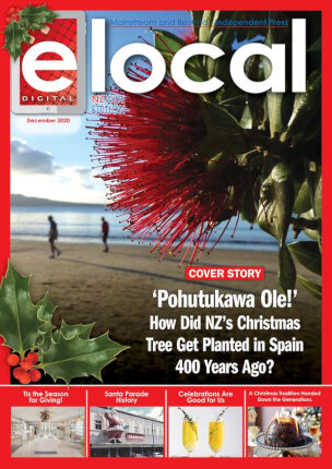 elocal Digital Edition – December 2020 (#237)